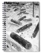Wisconsin: Lumbering, 1885 Spiral Notebook