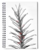 X-ray Of Pinecone With Seeds Spiral Notebook