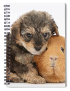 Yorkipoo Pup With Guinea Pig Spiral Notebook
