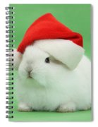 Young White Rabbit Wearing A Christmas Spiral Notebook