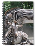 Zebras Spiral Notebook