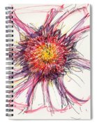 2012 Drawing #10 Spiral Notebook