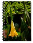 20120915-dsc09868 Spiral Notebook