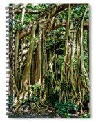 20120915-dsc09882 Spiral Notebook