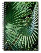 20120915-dsc09902 Spiral Notebook