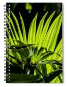 20120915-dsc09911 Spiral Notebook