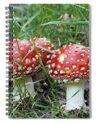 Amanita Muscaria Spiral Notebook
