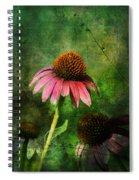 3 Amigos Echinacea Coneflower Grunge Art Spiral Notebook