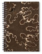 Baculites Fossil Spiral Notebook