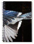 Blue Jay In Flight Spiral Notebook