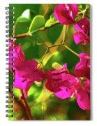 3- Bougainvillea Spiral Notebook