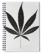 Cannabis Sativa, Marijuana Leaf Spiral Notebook