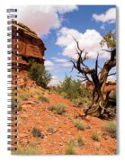 Canyonlands Needles District Spiral Notebook