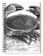 Crab Spiral Notebook
