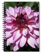 Dahlia Named Lauren Michelle Spiral Notebook