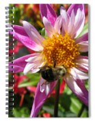 Dahlia Named Lorona Dawn Spiral Notebook
