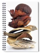 Dried Pieces Of Vegetables.  Spiral Notebook