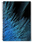 Eastern Bluebird Feathers Spiral Notebook
