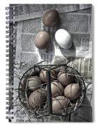 Eggs Spiral Notebook