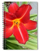 Flower Spiral Notebook