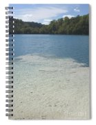 Freshwater Reef Spiral Notebook