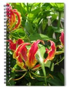 Gloriosa Named Rothschildiana Spiral Notebook