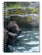 Grizzly Bear Or Brown Bear Spiral Notebook