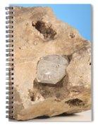 Herkimer Diamond Spiral Notebook