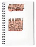 Illustration Of Epithelium Types Spiral Notebook