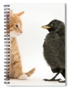 Jackdaw And Kitten Spiral Notebook