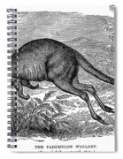 Kangaroo Spiral Notebook