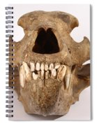 Kodiak Bear Skull Spiral Notebook
