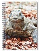 Komodo Dragon Spiral Notebook