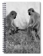 3 Monkeys Hey Its Not A Wig Spiral Notebook
