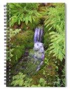 Mossy Waterfall Spiral Notebook
