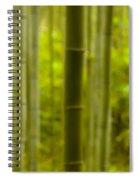 Mystical Bamboo Spiral Notebook