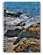 3 Of Mother Natures Finest  Textures Spiral Notebook