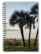 3 Palms On The Beach Spiral Notebook