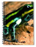 Pasco Poison Frog Spiral Notebook