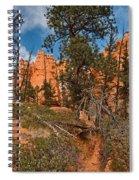 Queen's Garden Spiral Notebook