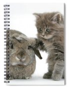 Rabbit And Kitten Spiral Notebook