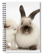 Ragdoll-cross Kitten And Young Spiral Notebook