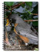 Robin Feeding Its Young Spiral Notebook