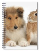 Rough Collie Pup With Rabbit Spiral Notebook