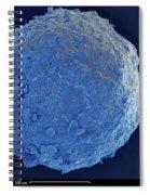 Sem Of Cretaceous-tertiary Kt Meteorite Spiral Notebook