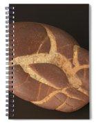 Septarian Nodule Spiral Notebook