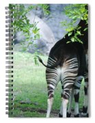 Two Stripes Spiral Notebook