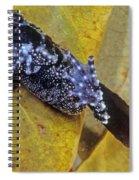 Vietnamese Moss Frog Spiral Notebook