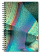 Vitamin C Crystal Spiral Notebook