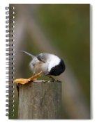 Willow Tit Spiral Notebook